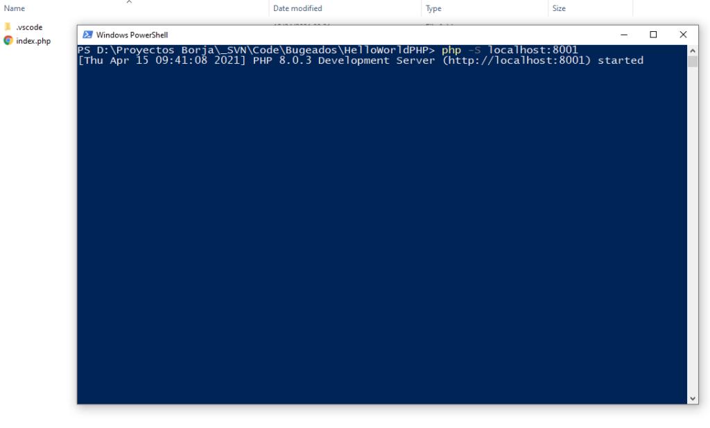terminal servidor web local php